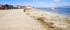 Beach Brdonja - Vir - Island Vir - Dalmatia - Zadar - Croatia