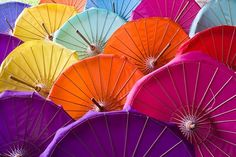 Bor Sang, Umbrella Factory | Alex Sievers Photography