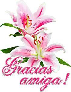 Gracias imagen #5168 - Gracias amiga! Tags: Animacion, Destellos, Flores. Imágenes y fotos de 'Gracias' con frases para facebook, whatsapp y twitter.