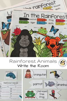 Rainforest Animals Write the Room Rainforest Activities, Rainforest Theme, Rainforest Animals, Literacy Centres, Literacy Activities, Activities For Kids, Animal Habitats, High School, Summer School