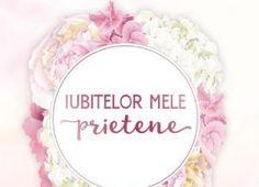Iubitelor mele prietene – Irina Binder, Carmen Voinea-Răducanu Editorial, Literatura
