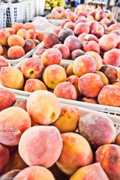 Nashville and the Farmers' Market