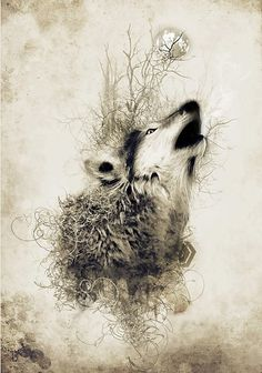 abstract, anime, artistic wolf black and white, digital art, painting, photo manipulation