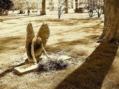 angel statue kneeling over grave Lake Forest Cemetery Sadness in Sephia Cemetery Angels, Cemetery Statues, Cemetery Headstones, Old Cemeteries, Cemetery Art, Angel Statues, Graveyards, Highgate Cemetery, Statue Ange