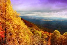 Pisgah National Forest, North Carolina. My favorite forest in the whole world. Micah powder like fairy dust on your boots, huge quartz boulders, enormous balds with stunning views of valley and forest, waterfalls, and the dank and primal earthy smell of deep woods.