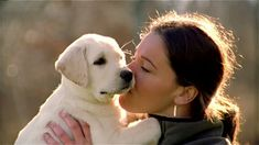 PetSutra - Come when called - Dog Training - Loving Puppy