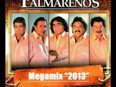 """Los Palmareños Megamix 2013 Dj.""""Tito"""""""