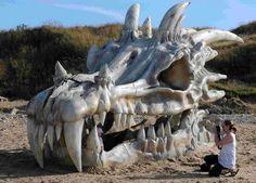 ayden Dragons, Lion Sculpture, Statue, Image, Art, Art Background, Train Your Dragon, Kite, Kunst