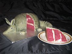 """armadillo cake is a must at my wedding! 1) in one of the best movies ever """"steel magnolias"""" 2) Josh's favorite animal! Must find someone to make it lol#groomscake"""
