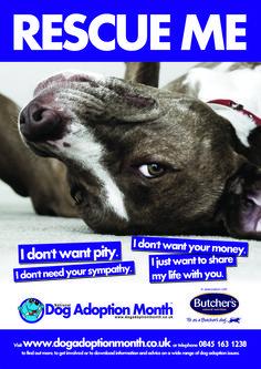 Dog Adoption Event Flyer The Pet Project Pinterest