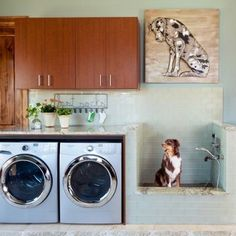 Take your laundry room to the next level with a pet shower area. The whole family—including Fido—deserve clean coats. (And that mini shower doubles as a foot rinsing station for humans, too.) above washer and dryer open shelves Clever Laundry Room Ideas Mudroom Laundry Room, Laundry Room Remodel, Laundry Room Design, Garage Laundry, Animal Room, Dog Washing Station, Laundry Room Inspiration, Dog Rooms, Dog Shower