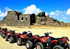 Roar along the north coast of Aruba aboard a single or double ATV on this half-day tour. Kick up dirt as your all-terrain vehicle takes you through rugged back roads, the desert, seaside bluffs and beaches. Capture amazing photos while visiting Alto Vista Cruise Excursions, Shore Excursions, Dream Vacations, Vacation Spots, Vacation Wear, Vacation Memories, Aruba Honeymoon, Honeymoon Ideas, Aruba Island