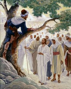 Zacchaeus.. a tax collector who climbed a tree in order to see Jesus.