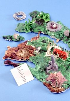 Help students learn how islands are created and have them build fun models of these diverse landforms. This is a great project for kids in third, fourth, and fifth grades.