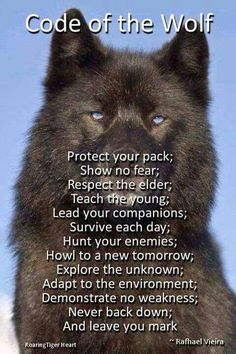 Code of the wolf.some of the reasons for my wolf tattoo Great Quotes, Me Quotes, Motivational Quotes, Inspirational Quotes, Respect Quotes, Funny Quotes, Badass Quotes, Strong Quotes, Wolf Love