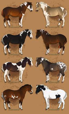 (Credit to artist) Cute Horses, Beautiful Horses, Horse Color Chart, Twenty One Pilots Art, Horse Coat Colors, Horse Markings, Horse Illustration, Horse Artwork, Horse Pattern