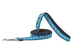 RC Pet Products Kitty Cat Leash, 1/2-Inch by 6-Feet, Love Birds