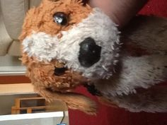 Lost on 18/11/2014 @ Holiday inn, Bloomsbury London. Well loved scruffy little dog left behind when we left the hotel. 11yr old daughter misses him soooo much is still upset when she goes to bed. Visit: https://whiteboomerang.com/lostteddy/msg/qv1hhy (Posted by Colin on 27/11/2014)
