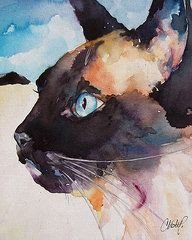 Seal Point Siamese Cat by Christy Freeman