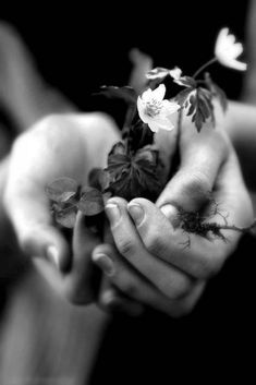If your heart is a volcano, how do you hope that bloom your hands? Black N White, Black White Photos, Black And White Photography, Photo Black, Byron Katie, Old Hands, Be Kind To Yourself, Shades Of Grey, Holding Hands