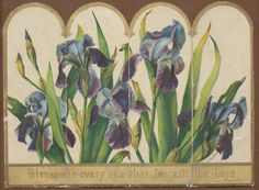 C5145 Large Victorian Multi Fold Religious Card Scripture Irises Kate Sadler | eBay