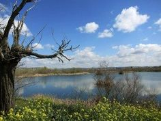 Las lagunas de El Porcal, en el Parque Regional del Sureste, hogar de 8.000 aves singulares. De las profundidades de estas más de 400 hectáreas de lagunas, estepas y humedales de los cursos bajos de los ríos Manzanares y Jarama en la Comunidad de Madrid. EFE/Caty Arévalo
