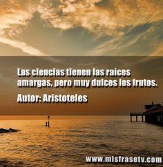 15 Mejores Imágenes De Postales Con Frases De Aristoteles De