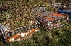 The Abandoned Triumph Car Graveyard at Appleton, Cheshire