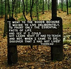 """""""I went to the woods because I wished to live deliberately, to from only the essential facts of life. And see it I could not learn what it had to teach and not, when I came to die, discover that I had not yet lived."""" - Henry David Thoreau"""