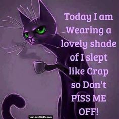 Today I Slept Like Crap So Don't Piss Me Off.....