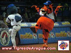 La Mascota de los Tigres