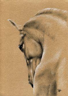 Rysunek konia z aksamitną sierścią.