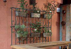 Ervas e temperos no jardim vertical feito com grade antiga