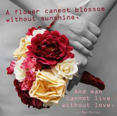 A Flower Cannot Blossom ... #valentines #quotes