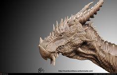 http://www.bing.com/images/search?q=dragon  head  3d cg