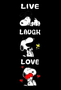 Snoopy and Woodstock Shadow Box - Halloween Wallpaper Snoopy Tattoo, Snoopy Images, Snoopy Pictures, Peanuts Cartoon, Peanuts Snoopy, Snoopy Und Woodstock, Snoopy Wallpaper, Wallpaper Wallpapers, Snoopy Comics