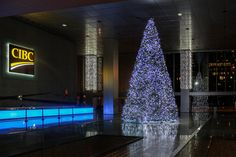 Holiday Tree, Christmas Holidays, Christmas Tree, Instagram Website, Trees, Facebook, Twitter, Christmas Vacation, Teal Christmas Tree