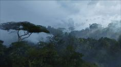 Jungle Forest Mist - Avatar VistaLore daily pics of beauty & imagination GameScapes screenshots gaming games Images pictures Fantasy Sci-Fi Science Fiction Fantasy Movies, Sci Fi Movies, Shot By Shot, Avatar Movie, Movie Shots, Games Images, Visual Effects, Cinematography, Animation