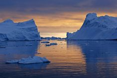 More Traces of Cancer-Causing PFAS in Arctic Raise Alarm Over Global Spread