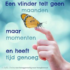 Een vlinder telt geen maanden maar momenten en heeft tijd genoeg. Sofia Anima, praktijk voor hooggevoelige mensen. www.sofia-anima.nl #hsp