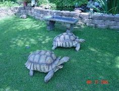 I have seen numerous suggestions for Russian tortoise diet Some great Some awful. Russian Tortoises are nibblers and appreciate broad leaf plants. Tortoise Habitat, Tortoise Care, Tortoise Turtle, Tortoise Food, Tortoise House, Turtle Habitat, Giant Tortoise, Tortoise Enclosure, Turtle Enclosure