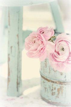 Elsker lyyyserosa peoner og ranukler, hortensia og pelargonium!!!