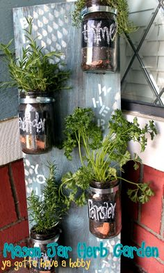 Mason Jar Herb Garden - may have already pinned this, but I'm doing it again as a reminder to actually make this!