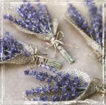 Lavanta Ve çuval bezi yaka çiceği - Herb Düğün - Avrupa Zarif Düğün - Mor Kurutulmuş Çiçek - Groomsmen, Damat - Bitkisel Yaka Pin