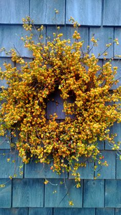 Fresh Bittersweet Wreath by Scarletsmile contemporary-wreaths-and-garlands Wreaths For Front Door, Door Wreaths, Twig Wreath, Autumn Wreaths, Christmas Wreaths, Wreath Fall, Orange Show, Wreaths And Garlands, Thanksgiving Decorations