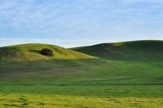 There is a certain serene feeling when you get off the crowded freeways in California and head to wide open spaces.  East of Paso Robles, I headed down a small two lane road in the late afternoon and I was soon rewarded with views of gorgeous green rolling hills and not another person in sight for miles.