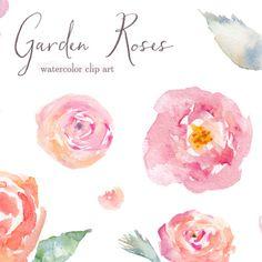 watercolor rose clip art Angie Makes. watercolor clip art. watercolor flowers