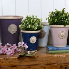 Newest Photo heritage Garden Pots Tips There are almost countless approaches for. Newest Photo her Kew Gardens, Botanical Gardens, Outdoor Gardens, Garden Planters, Planter Pots, Terracotta Flower Pots, Small Potted Plants, Hand Thrown Pottery, Small Space Gardening