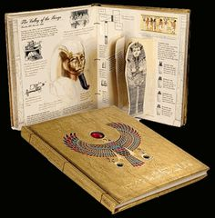 """This book is called """"Egyptology"""" by Dugald A. Steer. It is a part of Ology series, which all include interactive elements to it. There are letters that the readers can open, flaps, pockets filled with various objects and pictures, maps and if I recall correctly volvelles. Awsome way to emersous yourself in learning."""