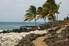 Trail on the Kohala Coast, Hawaii Island Kohala Coast, Big Island, Hawaii, Trail, Cottage, Vacation, Beach, Water, Plants